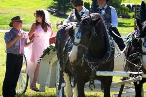Farm Wedding Venue Horse and Carriage