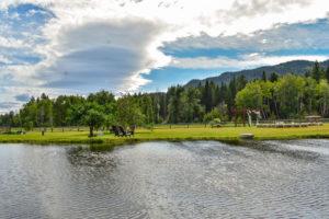 meadow-valley-ranch