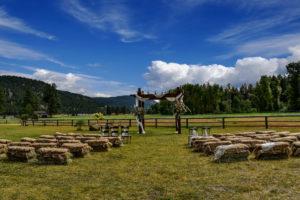 pergola-outdoor-wedding